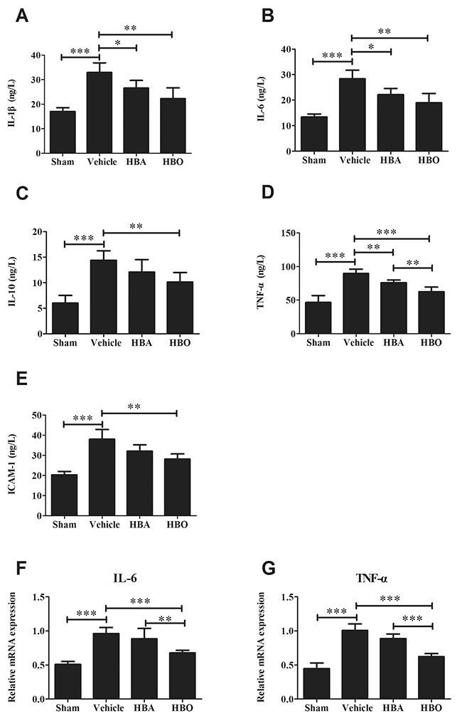 Analysis of inflammatory cytokines levels in HBO-treated MIRI rats.