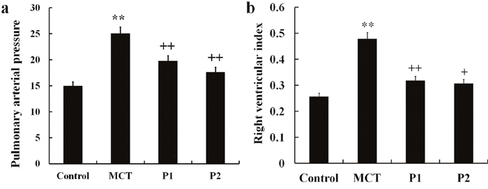 Effect of PCPA on MCT-induced PAP and RVI.
