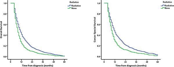Survival curves of EC patients aged ≥ 80.