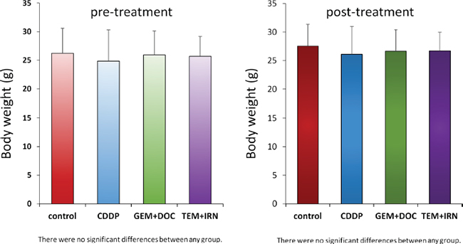 Effect of treatments on mouse body weight.