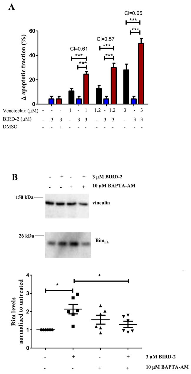 Synergistic effect of BIRD-2 and venetoclax in SU-DHL-4 cells, correlating to Bim upregulation in BIRD-2-treated SU-DHL-4 cells.