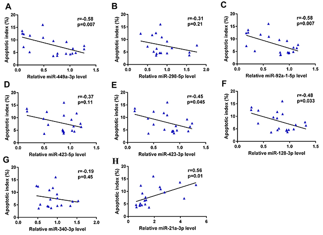Correlation between relative expression levels of miRNAs and germ cell apoptosis.