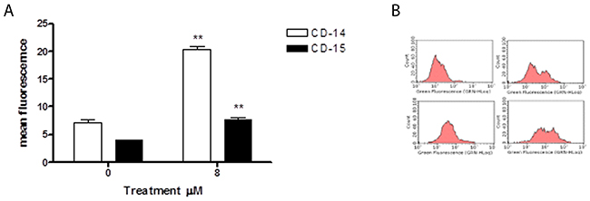 Effect of 6-MITC on differentiation of HL-60 cells.