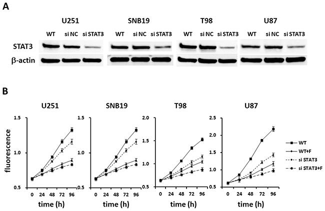 Fluspirilene as a potential STAT3 inhibitor.