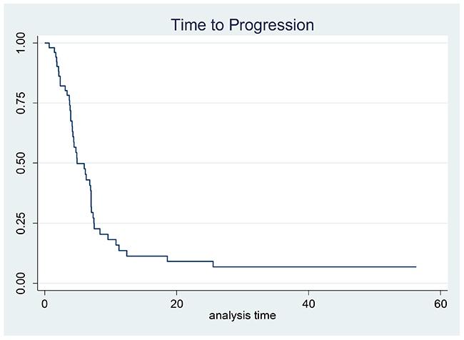 Kaplan–Meier estimates for time to progression.