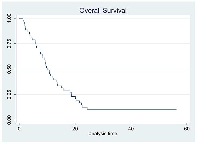 Kaplan–Meier estimates for overall survival.