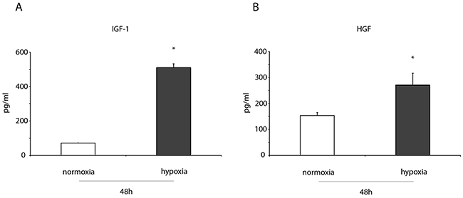 IGF-1 and HGF levels increase in the conditioned medium of hypoxic ckit+CSCs.