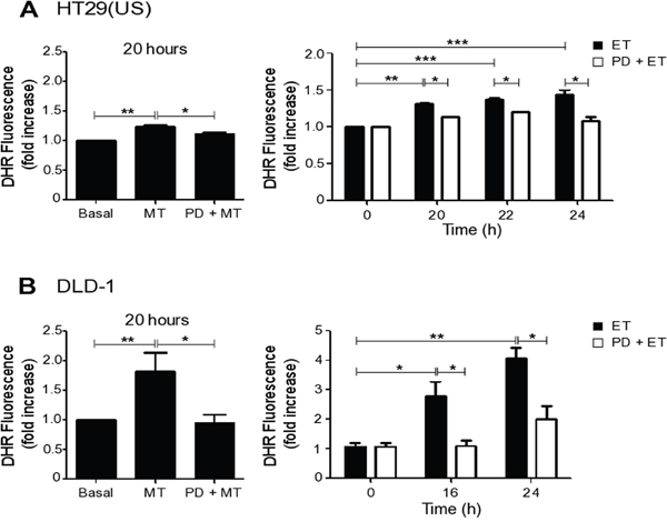 MEK inhibition reduces ROS production induced by Methotrexate and Etoposide.