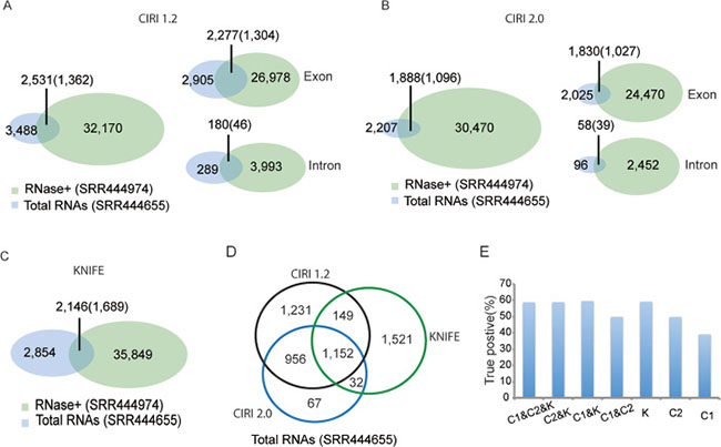 Prediction performance of the total RNA-Seq data SRR444655 using three algorithms.