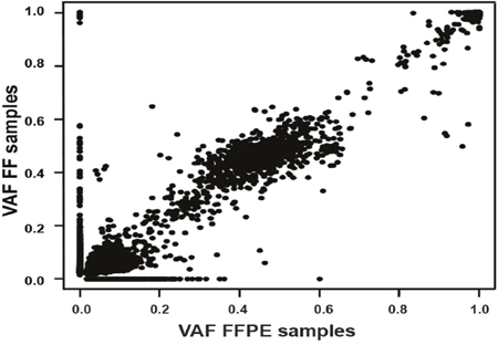 Overall correlation of variant allele frequency (VAFs) found between the 15 formalin-fixed paraffin embedded (x axis) and fresh frozen (y axis) paired samples.