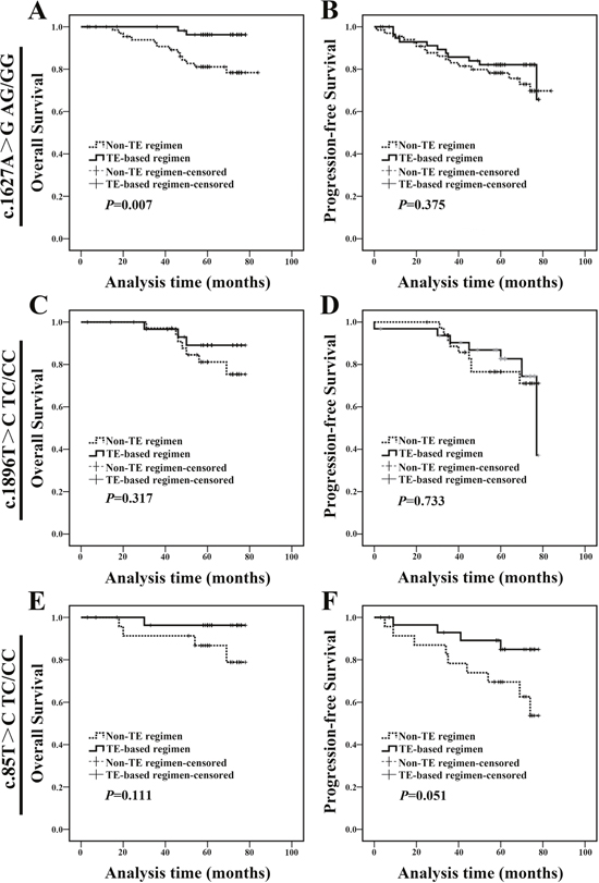 c.1627A>G AG/GG genotype breast cancer patients treated with TE-based regimen exhibited a better prognosis.