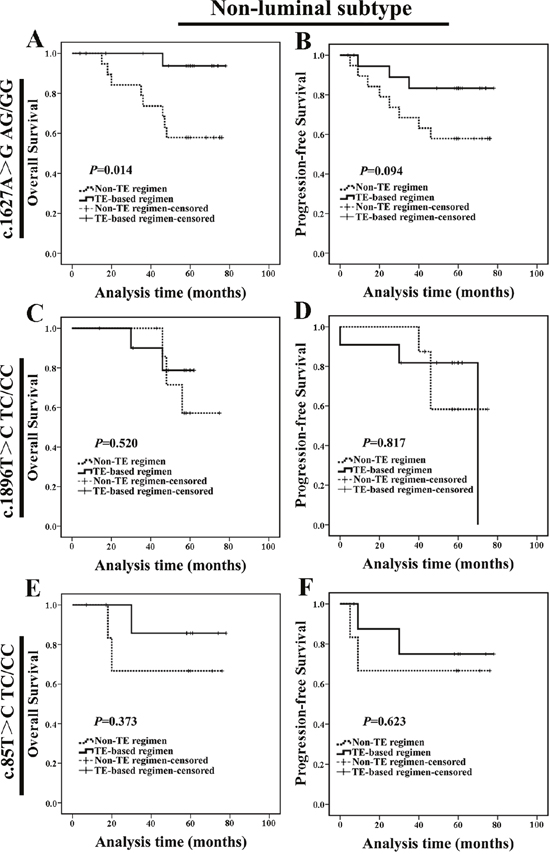 Non-luminal c.1627A>G AG/GG genotype carriers treated with TE-based regimen exhibited a better prognosis.
