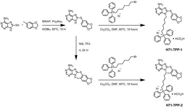 Chemical synthesis of mitochondrial-targeted small molecule Hsp90 inhibitor PU-H71-TPP.
