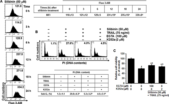 DR5 regulation by Ca2+-induced CaMKII in silibinin/TRAIL-mediated apoptosis.