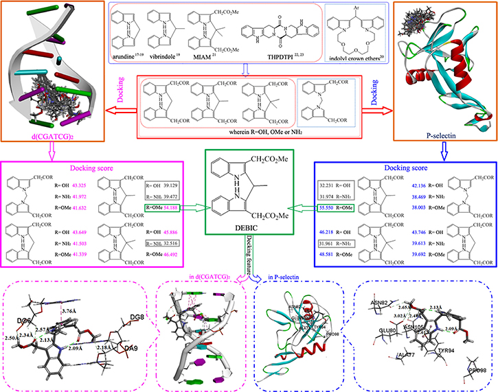 Design course: structural analysis of anti-tumor active indoles/bisindoles and DEBIC capable of targeting P-selectin and intercalating DNA provides 12 derivatives of bisindole-2- carboxylic acids, docking of them towards P-selectin and d(CGATCG)2.