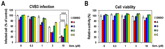 The effect of exogenous nucleosides on the anti-CVB3 activity of gemcitabine.