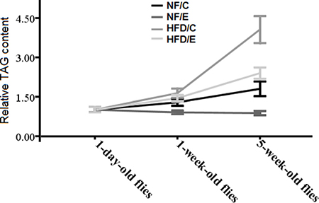 Effects of HFD and endurance training on flies' relative TAG contents at different ages.