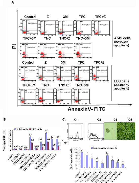 Effects of TFC and TNC on apoptosis in highly-metastatic Lewis lung cancer (LLC) and A549 cells and lung cancer stem cells (CSCs) growth.