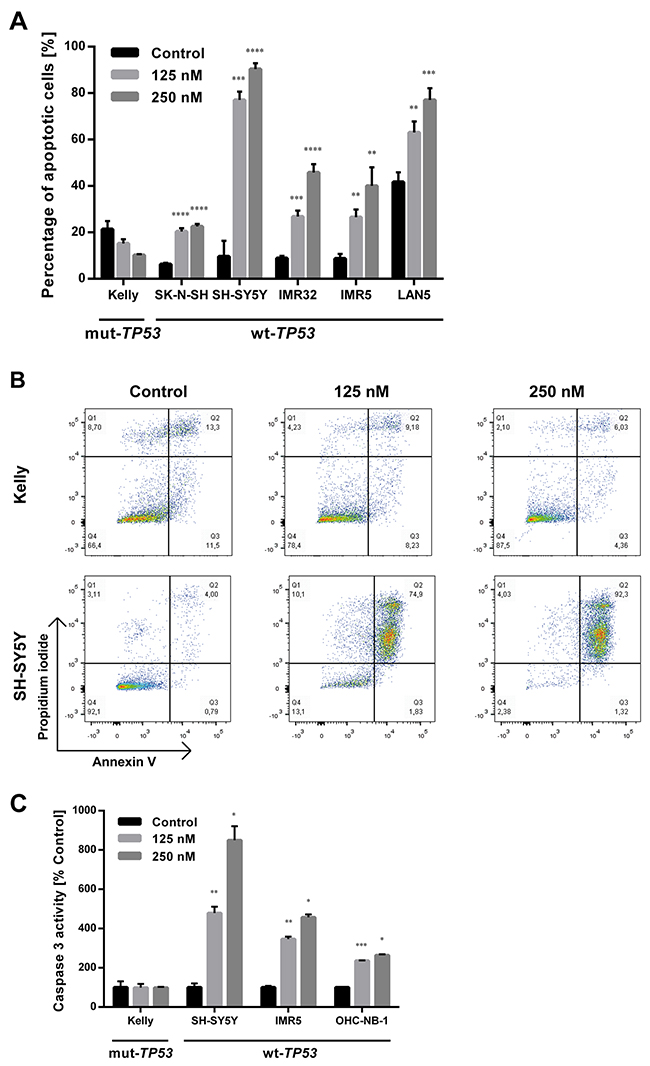 DS-3032b treatment selectively induces apoptosis in neuroblastoma cells with wildtype TP53.
