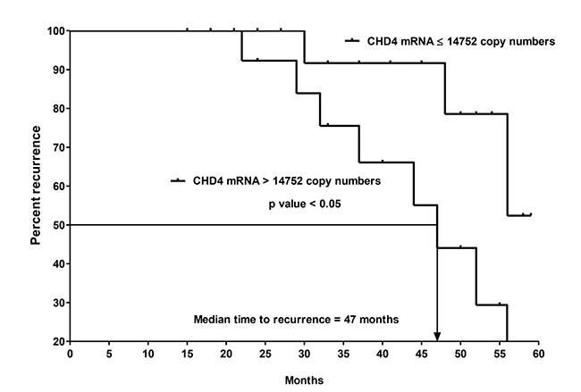 Kaplan-Meier curves of recurrence for the 2nd cohort of 31 CK20+ pN0 CRC patients after follow-up for 60 months based on CHD4 mRNA copy numbers.