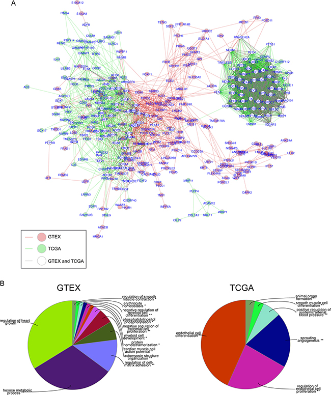 Comparison network of gene correlations in normal lung and LuADC.