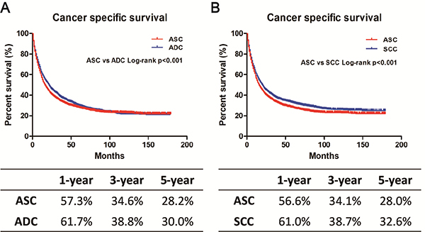 Kaplan-Meier plot and log-rank test for the cancer-specific survival (CSS) in 1:1 matched cohorts.