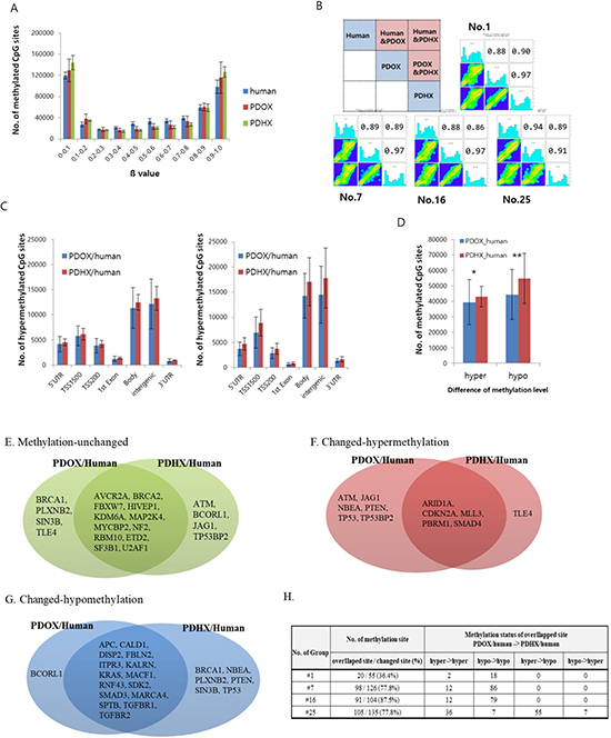Comparative analysis of DNA methylation arrays between original patient tumors and PDOX and PDHX.