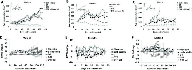 Antitumor activity of dabrafenib, trametinib, and palbociclib in combination.