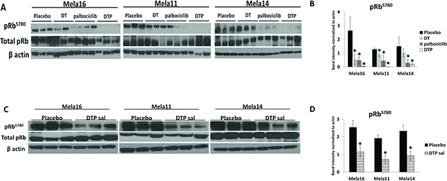 Cell signaling analysis in BRAF mutant tumors treated with dabrafenib, trametinib, and palbociclib identify pRb-Ser780 as biomarker.