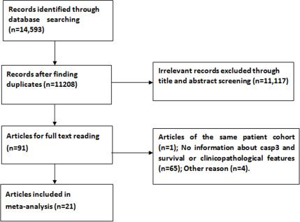 Flow diagram summarizing the process of study selection.