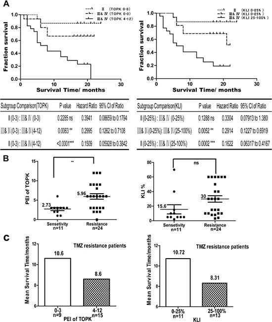 TOPK is a prognostic and predictive factor for glioma.