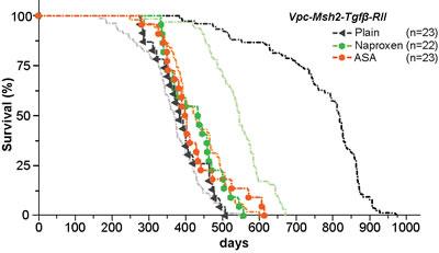 Mutation of TGFβ-RII eliminates NSAID tumor chemoprevention.