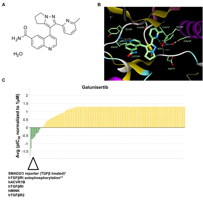 Galunisertib is a selective inhibitor of TGFβRI (Alk5) and Alk4.