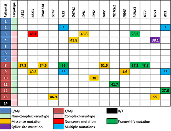 Immunophenotype, karyotype and mutations in each patient with mixed phenotype acute leukemia.