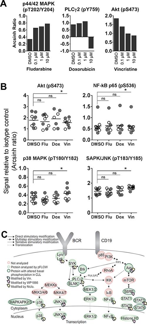 Cytostatic drug-induced phosphorylation levels in CLL B cells.