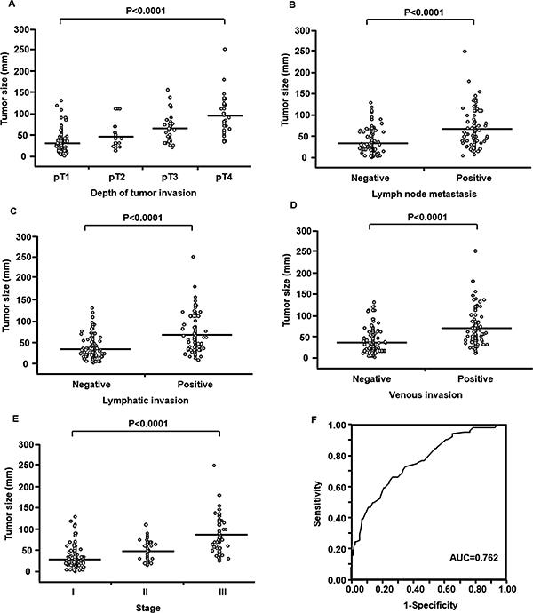 Relationship between tumor size and clinicopathological factors in 247 patients with resectable gastric cancer.