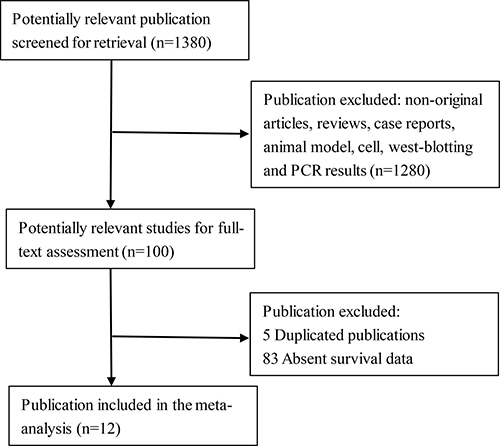 Flow diagram of reviewed relevant publications.