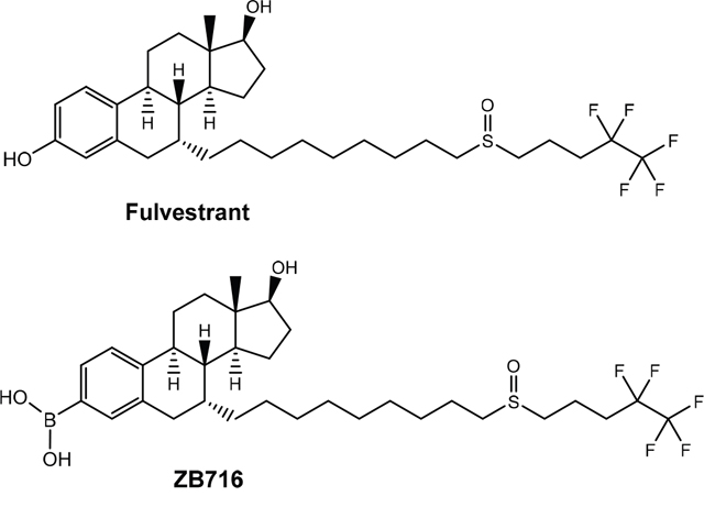 Structures of ZB716 and fulvestrant.