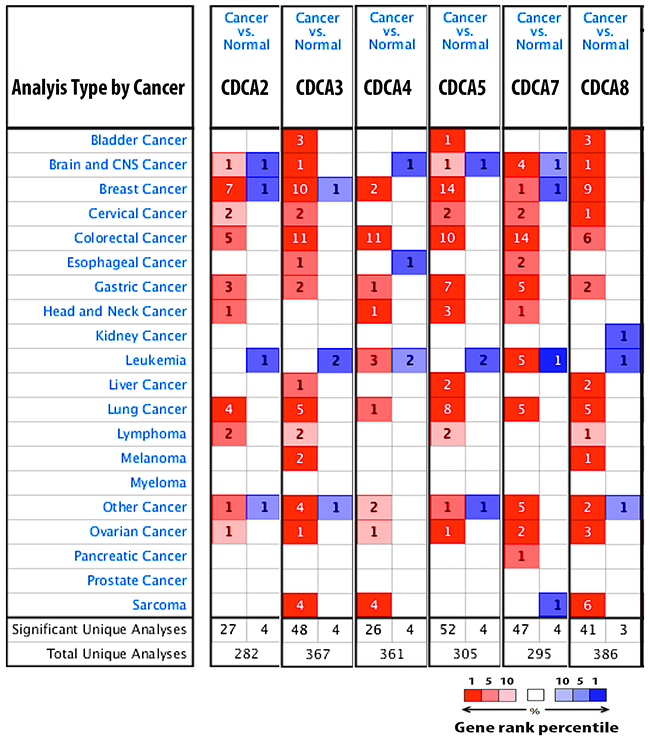 CDCA genes expression in 20 different types of cancer disease.