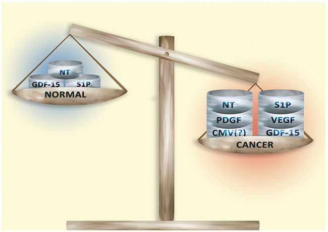 Secretory factors in normal tissue and in the tumor microenvironment.