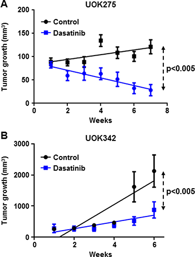 Dasatinib inhibits NF2-deficient tumor growth in two xenograft animal models.