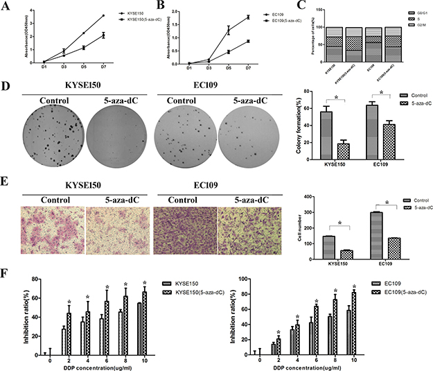 Treatment with 5-aza-dC led to downregulation of malignant properties in ESCC cells.
