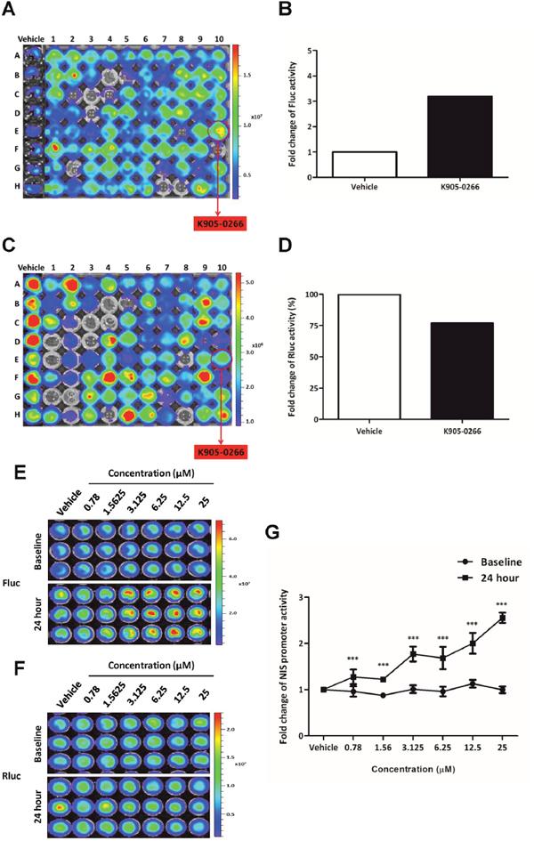 Exploration and excavation of tyrosine kinase inhibitor (TKI) as a potent NIS enhancer (K905-0266) by using high-throughput NIS enhancer screening platform in 8505C-PNIS-PCMV cells.