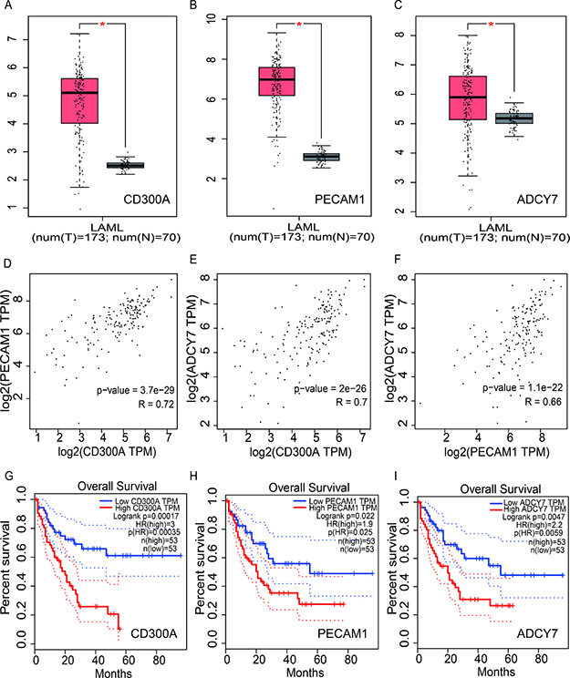 Analysis of the expression and prognosis value of CD300A, PECAM1 and ADCY7 in human acute myeloid leukemia.