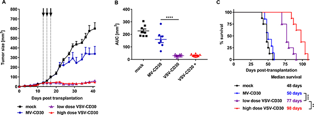 Oncolytic activity in vivo after intratumoral administration.
