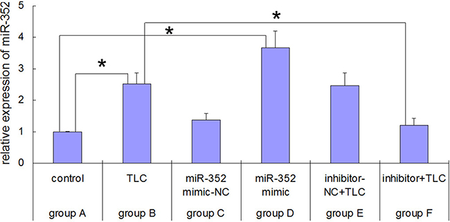 Real-time PCR results for rno-miR-352 in each group before and after rno-miR-352 intervention.