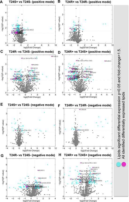 Volcano plots of cisplatin sensitive and resistant bladder cancer cell lines.