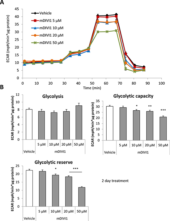 mDIVI1 treatment significantly reduces the glycolytic capacity of MCF7 cells without having an effect on basal glycolysis, hence decreasing their glycolytic reserve.