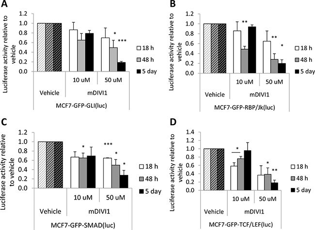 mDIVI1 treatment significantly inhibits stem-related signalling in MCF7 cells.