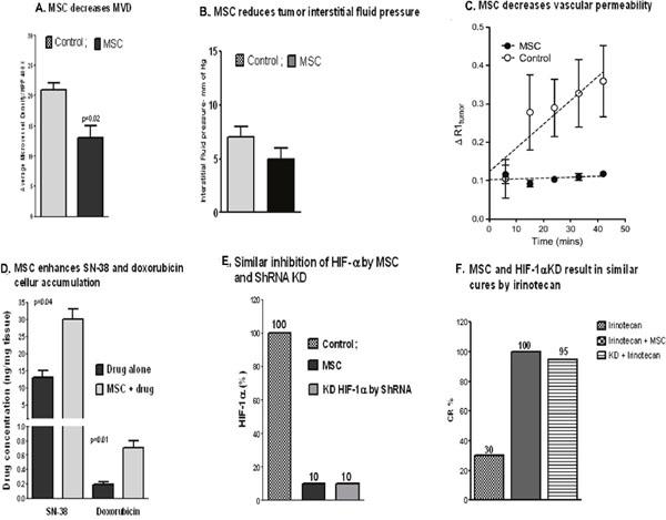 Pleiotropic effects of MSC.